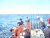 Fishing for Tuna on the Pacific Ocean
