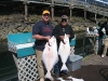 A couple of nice Halibut for the ride home