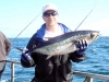 Decent Albacore Tuna caught in 2007 by the Website Admin
